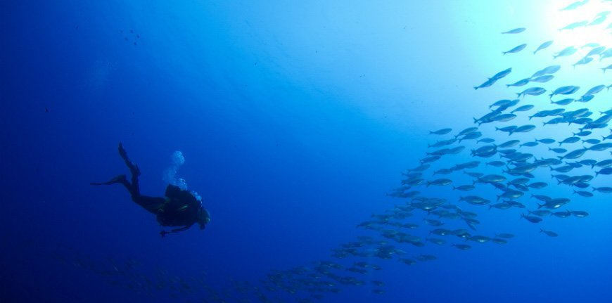 Doble buceo