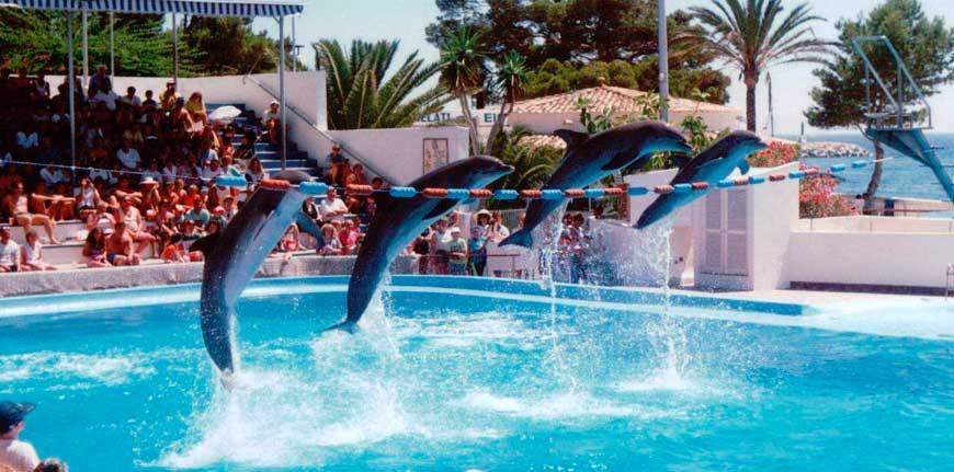 Marineland Palma de Mallorca